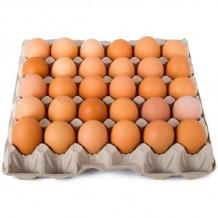 10 бр. Яйца М размер български