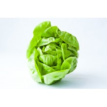 1 бр. Зелена салата